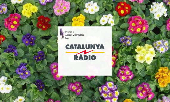 Jardins_oriol_villatoro_cat_radio_flors