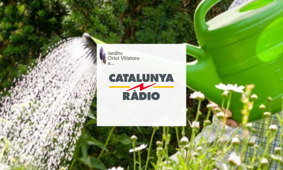 jardins_oriol_villatoro